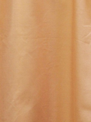 Ruffled Sleeves Long Sleeve Shirt